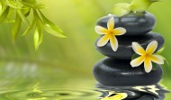 Evenimente internationale Reiki, Bucuresti 13-21 Mai